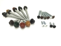 Head Painted Screws